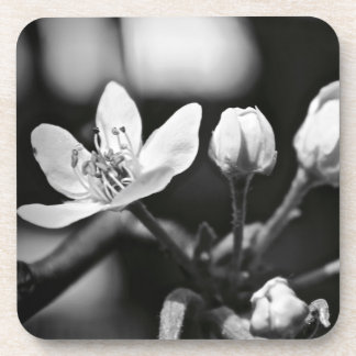 Tiny Black and White Flower Coaster