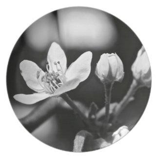Tiny Black and White Flower Dinner Plate