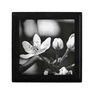 Tiny Black and White Flower Gift Box