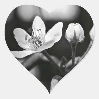 Tiny Black and White Flower Heart Sticker