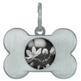 Tiny Black and White Flower Pet ID Tags