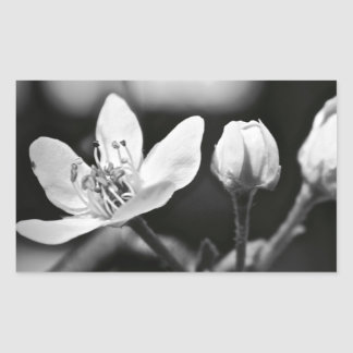 Tiny Black and White Flower Rectangular Sticker