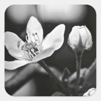 Tiny Black and White Flower Square Sticker