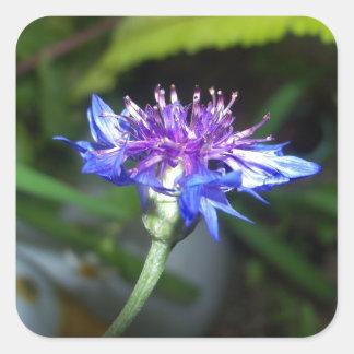 Tiny Blue and Violet Blossom Square Sticker