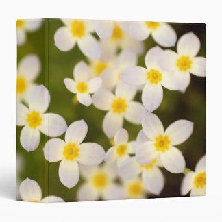 "Tiny Bluet Wildflowers 1.5"" Photo Album 3 Ring Binder"