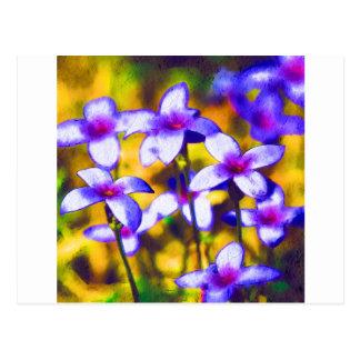 Tiny Bluet Wildflowers Digital Art Postcard