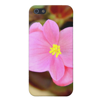 Tiny bright pink and yellow flowers iPhone 5 cover