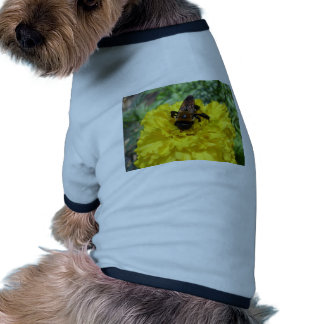 Tiny Bumble Bee Collecting Honey And Pollen From B Doggie Tee Shirt