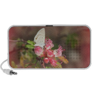 Tiny Butterfly on Pink Flower Speaker