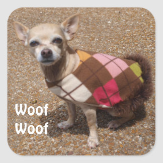 Tiny Chihuahua Says Woof Woof Square Sticker