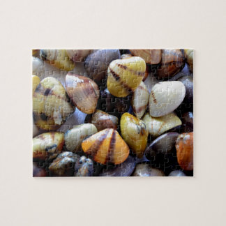 Tiny Colorful Clam Shells Jigsaw Puzzle