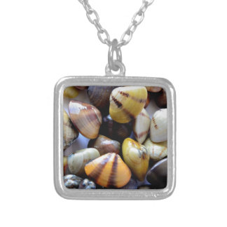 Tiny Colorful Clam Shells Square Pendant Necklace