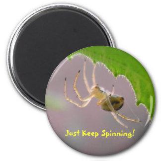 Tiny Desert Spider - Magnet #4