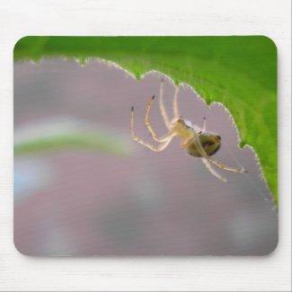 Tiny Desert Spider - Mousepad #1 mousepad
