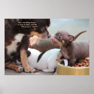 Tiny Dog Family at Dinner Poster