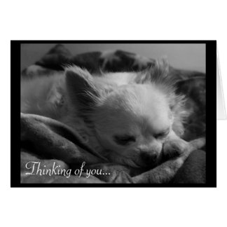 Tiny Dreamer - Thinking of You Card