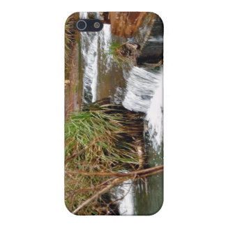 Tiny falls cases for iPhone 5