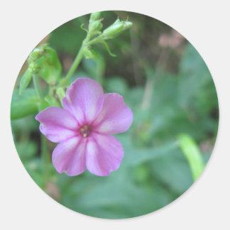 Tiny Flower Sticker