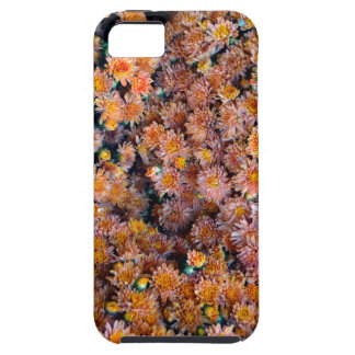 Tiny Flowers (Gift) iPhone SE/5/5s Case
