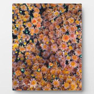 Tiny Flowers (Gift) Plaque