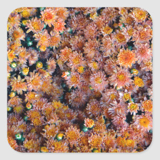 Tiny Flowers (Gift) Square Sticker