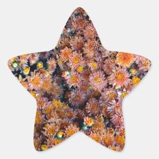 Tiny Flowers (Gift) Star Sticker