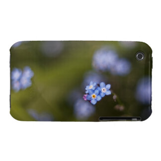 Tiny forget me not flower iPhone 3 cases