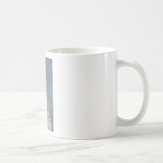 Tiny Georgia Sea Crab on a Rock Coffee Mug