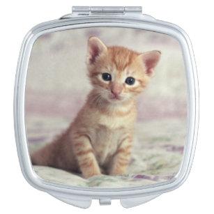 Tiny Ginger Kitten Makeup Mirror