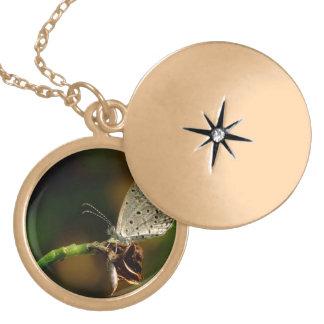 Tiny Grass Blue Zizula Hylax Butterfly Gold Plated Necklace