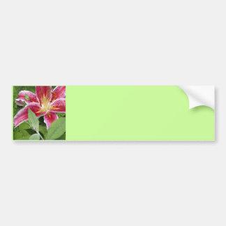 Tiny Green Frog on Stargazer Lily Bumper Sticker