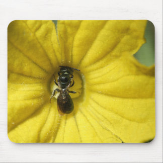 Tiny Insect Working in a Cucumber Flower Mousepad