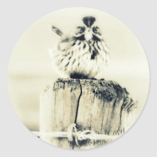 Tiny Little Backyard Bird Classic Round Sticker