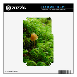 Tiny little mushroom decal for iPod touch 4G