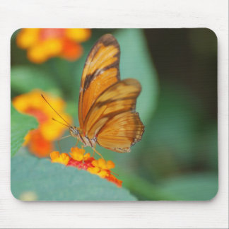 Tiny Orange Butterfly Mouse Pad