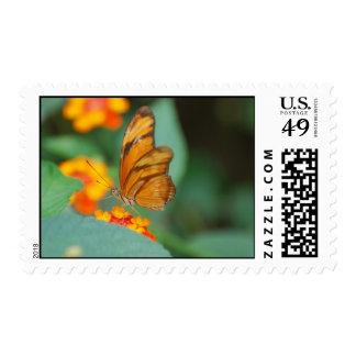 Tiny Orange Butterfly Postage Stamp