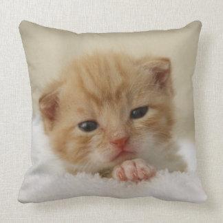 Tiny Orange Kitten Throw Pillow
