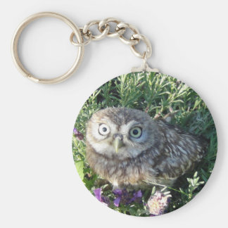 Tiny owl too cute for words keychain