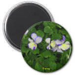 Tiny Pansy Gift Magnet