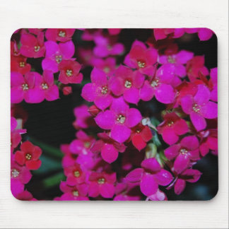 Tiny Pinks Mouse Pad
