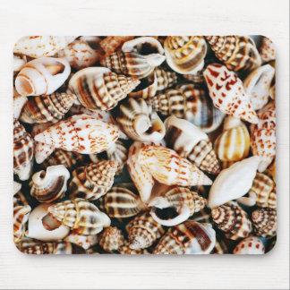 Tiny Pretty Seashells Mouse Pad