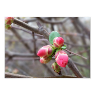 tiny red buds card