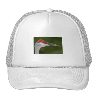 Tiny Red Feathers Trucker Hat