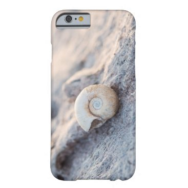 Beach Themed Tiny Seashell Barely There iPhone 6 Case