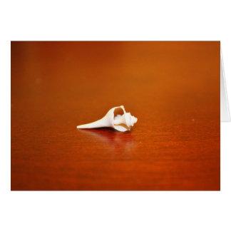 Tiny Shell Card