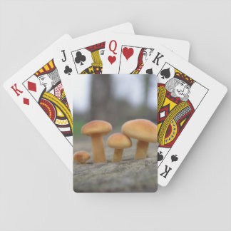 Tiny Toadstools macro Playing cards