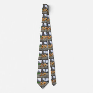 Tiny Toadstools Macro Tie