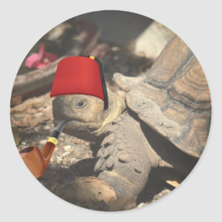 Tiny tortoise wearing a boumi hat classic round sticker