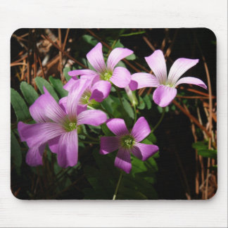 Tiny Treasures Mouse Pad