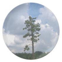 Tiny Tree Plate